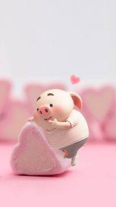 Những chú heo đáng yêu biểu cảm cực cool cute pho mai que, ngộ nghĩnh, dẽ thương, pig cute 2019 heo lợn ỉn